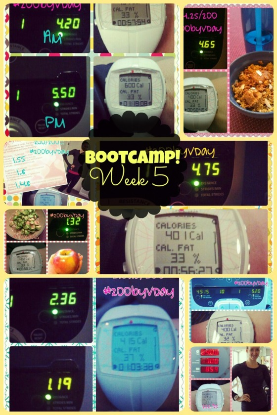 Tina Reale Best Body Bootcamp Week 5 Tone It Up TIU Love Your Body Challenge