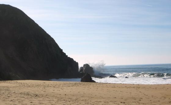 Gray Whale Cove Beach