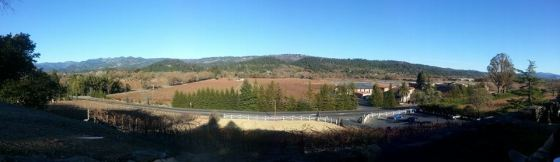 St Clement Vineyards