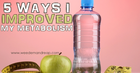 5 Ways I Improved My Metabolism Weed Em and Reap