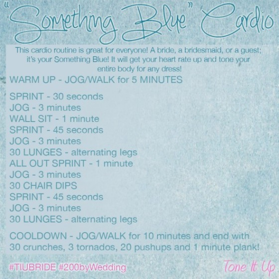 Tone It Up TIU Something Blue Cardio