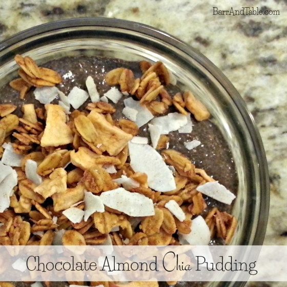 Chocolate Almond Chia Pudding Love Grown Foods Apple Walnut Granola