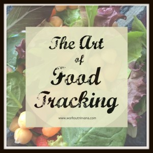 The Art of Food Tracking Part 1 Workout Nirvana