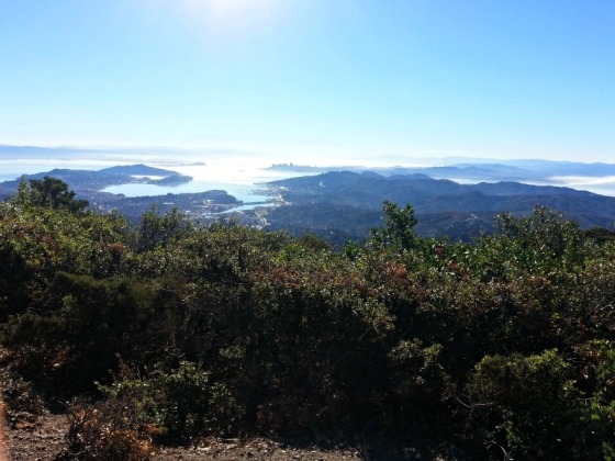 Mt Tamalpais