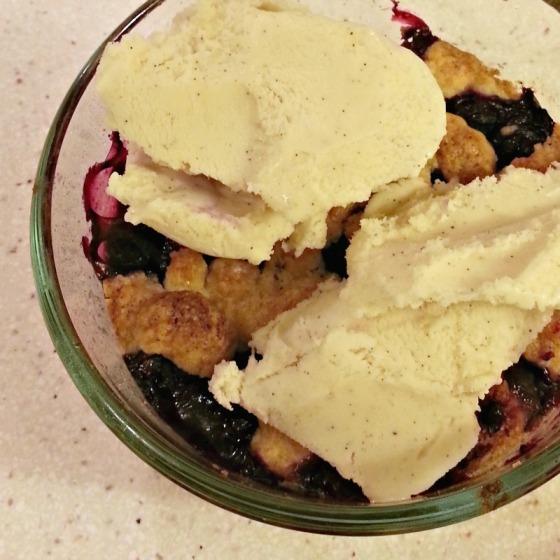 Blueberry Squares Smitten Kitchen Lush Tahitian Vanilla Gelato